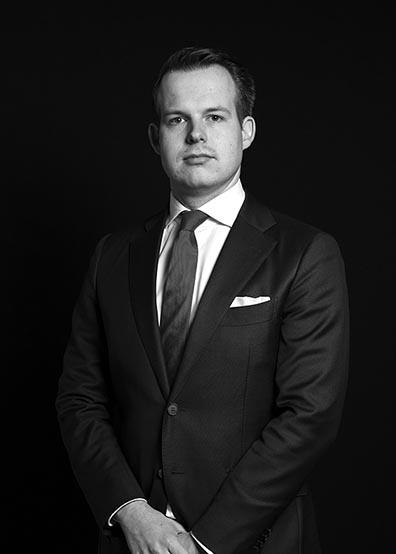 Thierry van den  Bergh